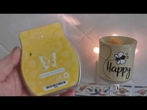 Bee Happy Scentsy Mini Plugin Warmer Review 2020