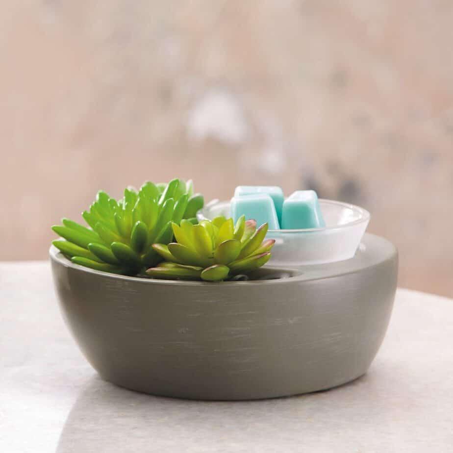Little Garden Scentsy Wax Warmer - 2019 Scentsy Catalogue