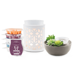 Perfect Scentsy - €59 Warmer