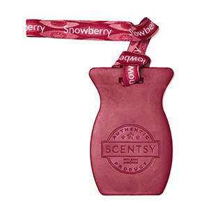 SNOWBERRY SCENTSY CAR BAR