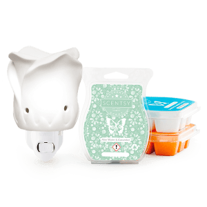 Scentsy Special Offers