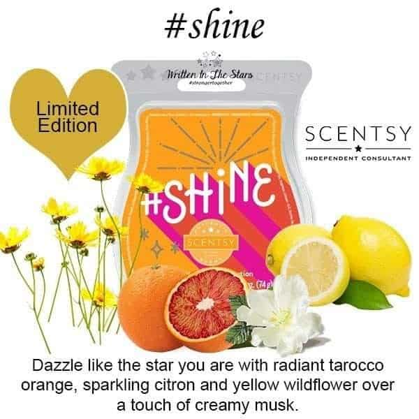 Shine Scentsy Bar