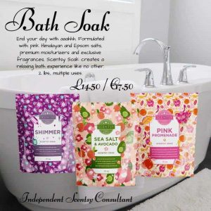SEA SALT & ADVOCADO SCENTSY SOAK