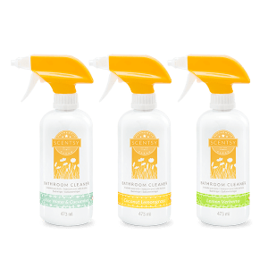 Scentsy Cleaning Products