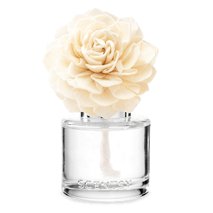Amazon Rain Scentsy Fragrance Flower
