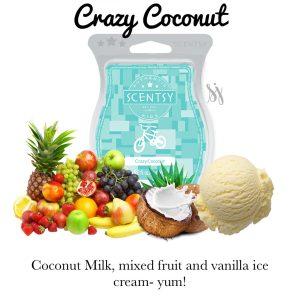 Crazy Coconut Scentsy Bar