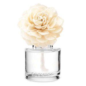 Go Go Mango Scentsy Fragrance Flowers