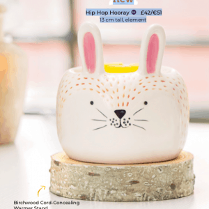 Hip Hop Hooray Scentsy Wax Warmer