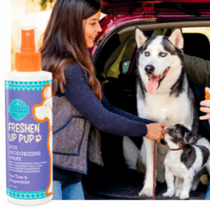 TEA TREE PEPPERMINT DOG DEODERISING SPRAY - SCENTSY