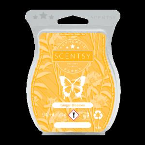 Ginger Blossom Scentsy Bar