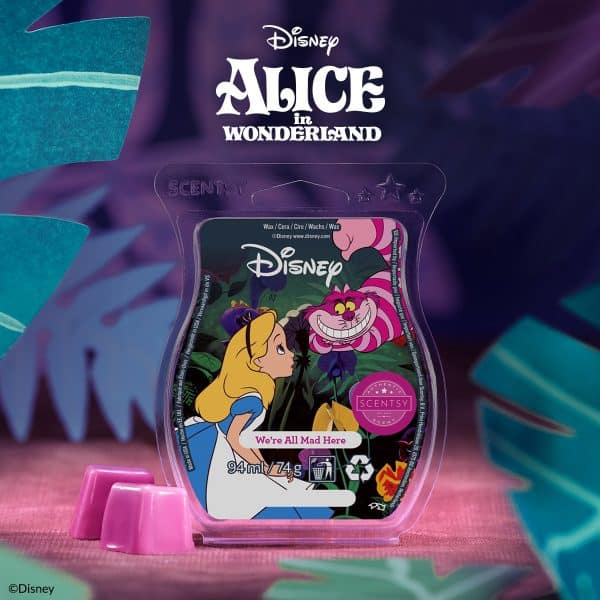 Alice in Wonderland Scentsy Bar, We're All Mad Here