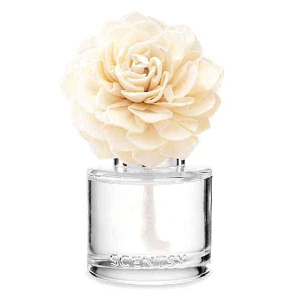 Cozy Cardigan Scentsy Fragrance Flower